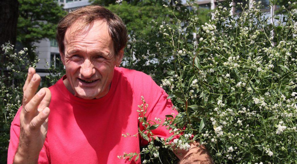 Jürgen Feder erklärt die Pflanzenwelt