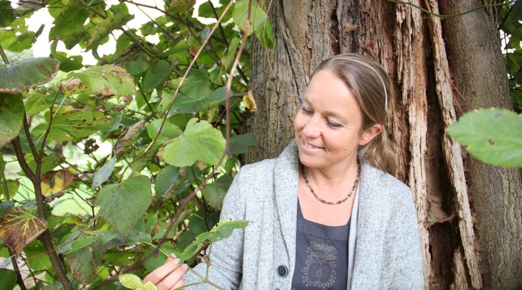 Kräuterexpertin Daniela Wolff betrachtet eine Linde
