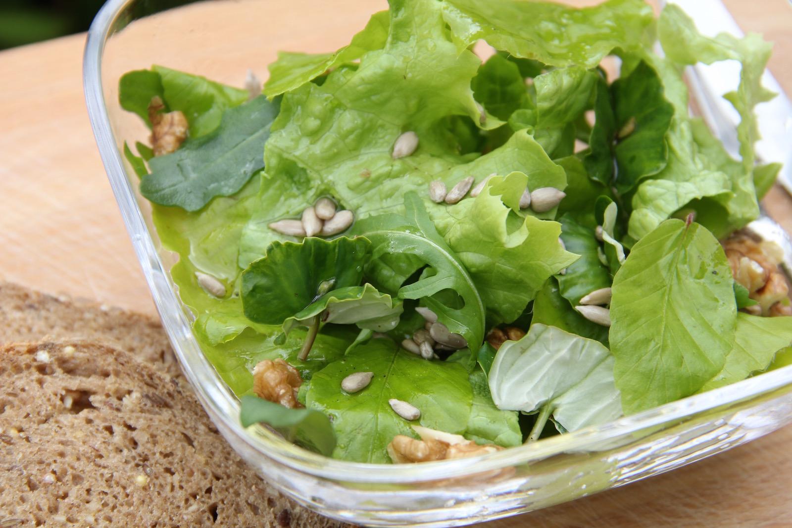Salat mit Buchenblättern und Keimlingen