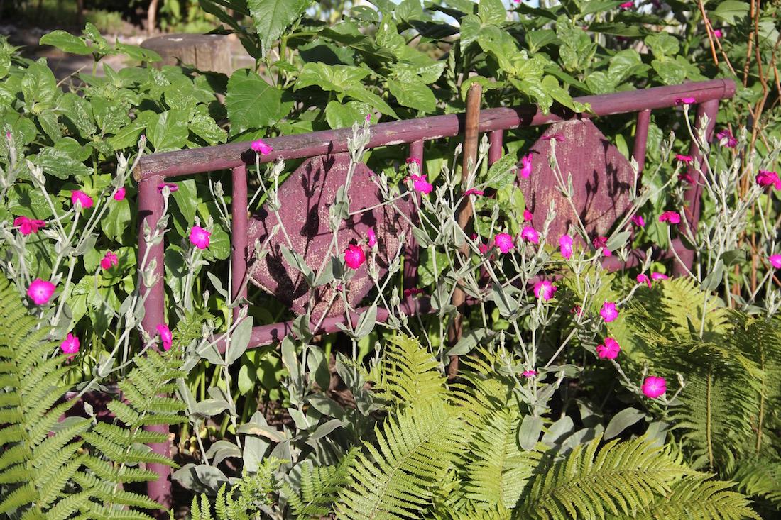 eine völlig überwucherte Gartenbanklehne