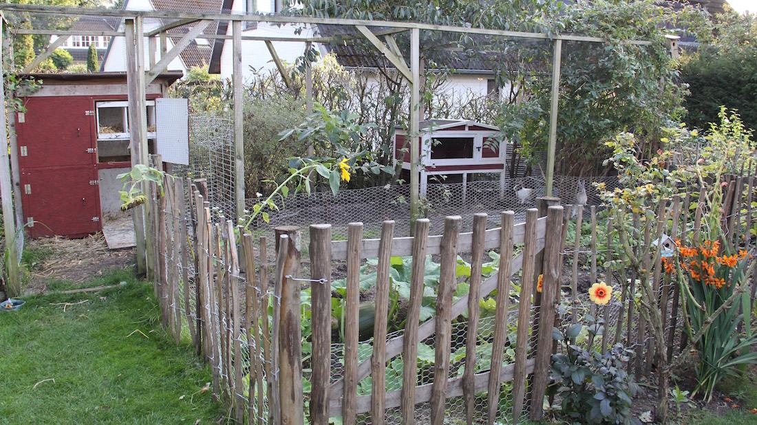 Eingezäunter Gemüsegarten, im Hintergrund ein Kaninchengehege und das große Hühnerhaus