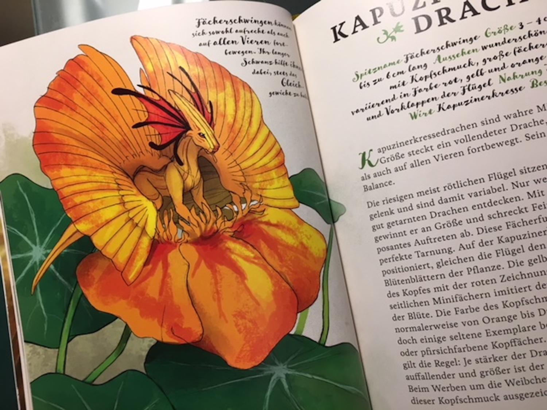 """EIn Kapuzinerkressedrache aus dem Buch """"Das geheime Leben der Gartendrachen"""""""