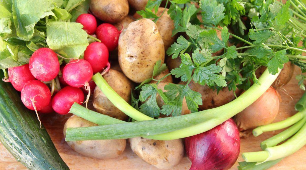 Kartoffeln, Radieschen, Petersilie, Gurke, Zwiebeln und Frühlingszwiebeln