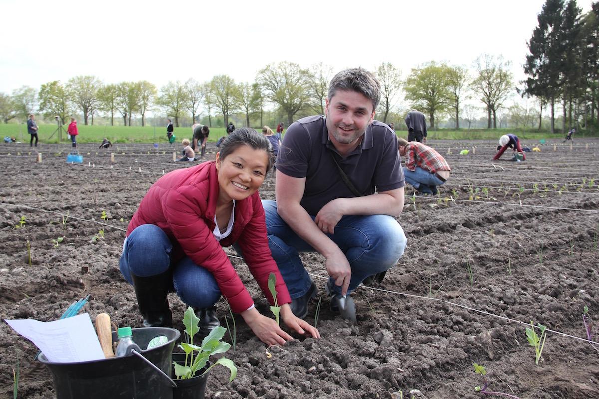 Chloe und Daniel setzen in ihrem Garten ein paar Kohlrabi-Pflänzchen.