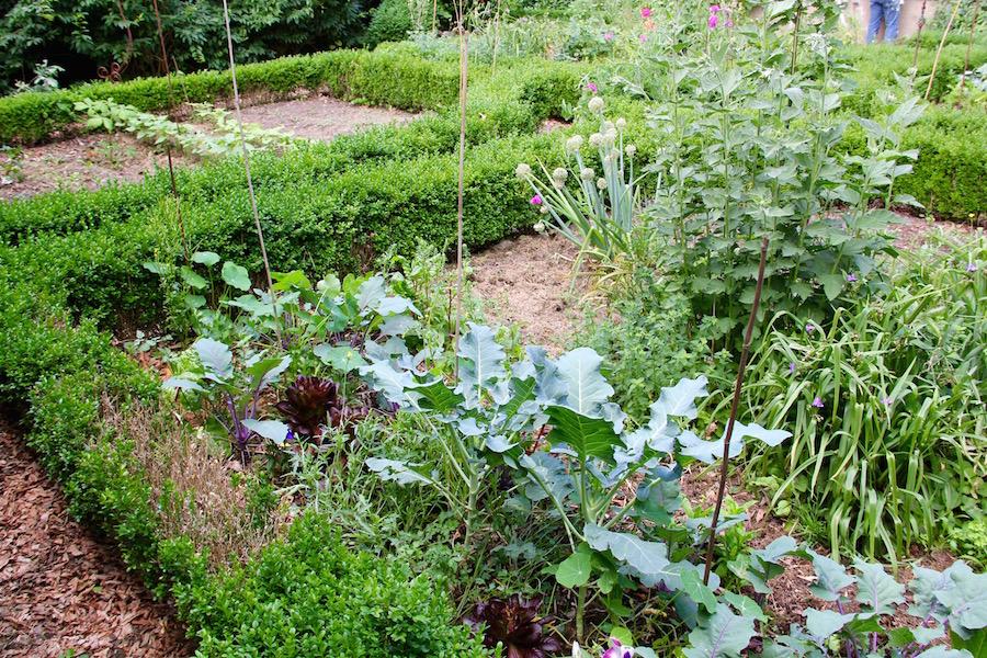 Bauerngartenbeet mit Gemüse und Zierpflanzen