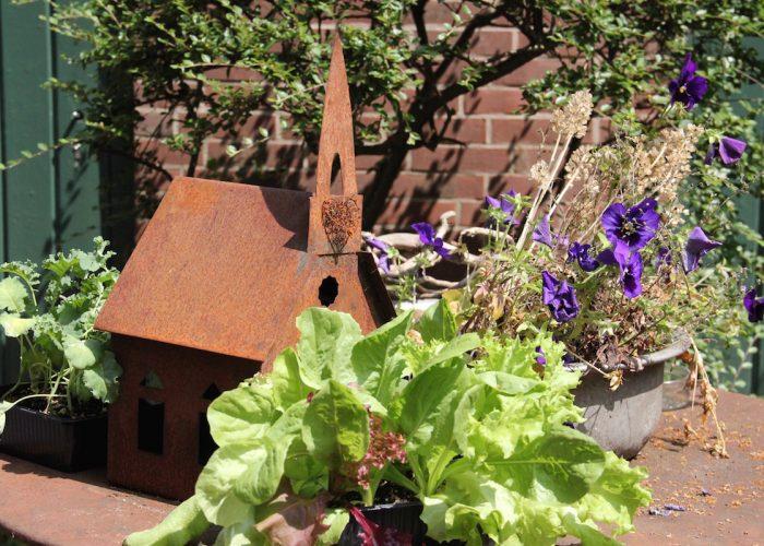 Kunst und Kohl, Salat und Blumen