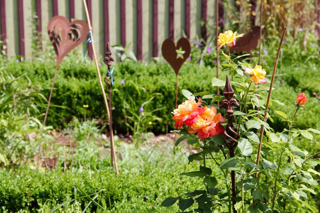 Rosen und Rankhilfen
