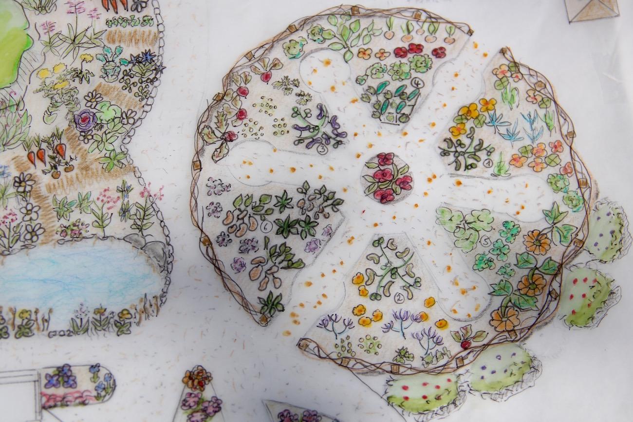 Zeichnung Madala-Beet