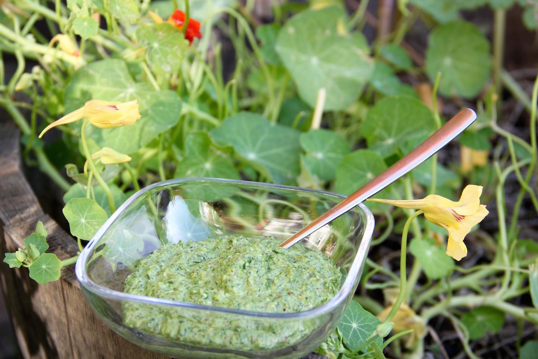 Glasschale mit Pesto vor einem Kapuzinerkressebeet