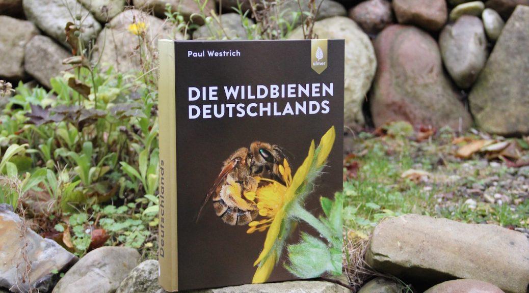 """Buch """"Die Wildbienen Deutschlands"""" von Paul Westrich"""