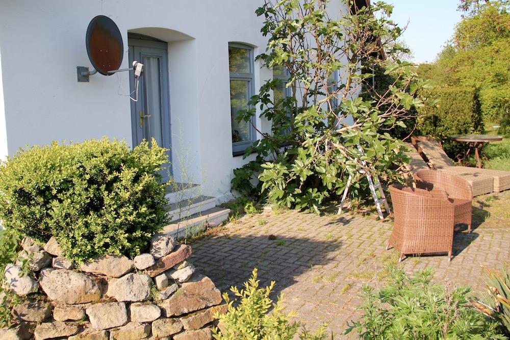 Terrasse mit einem Feigenbaum
