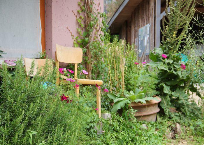 Stühle vor einem Häuschen inmitten von Rosmarin und Cosmea