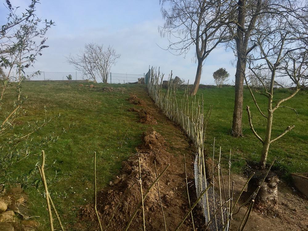 Weidenruten zu einem Zaun gesteckt den Hang nach oben