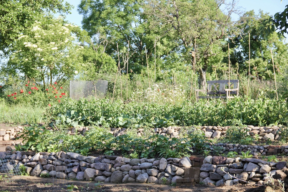 Aus dem oberen schon terrassierten Teil des Hanges nehmen Kartoffeln und Co. Fahrt auf.