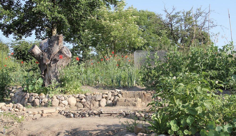 Gemüsegarten auf unterschiedlichen Ebenen, Wege und ein Baumstumpf