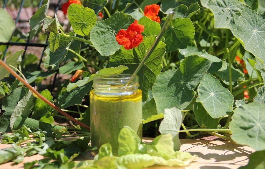 Glas mit Pesto auf einem Brett vor blühender Kapuzinerkresse