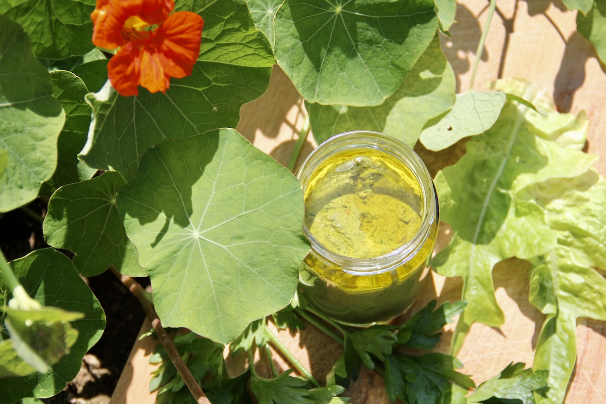 Glas mit Pesto auf einem Brett neben blühender Kapuzinerkresse