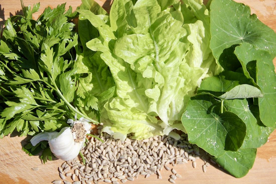 Salat, Kapuzinerkresse, Petersilie, Knoblauch und Sonnenblumenkerne