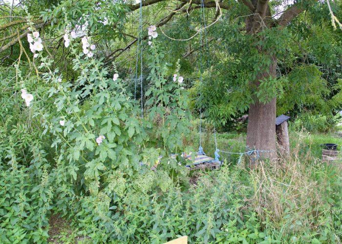Versteckt hinter den Stockrosen hängt eine Palettenbaumschaukel